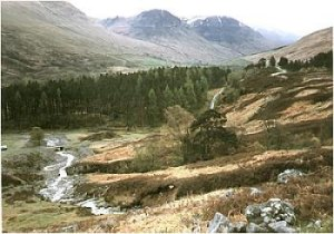 Looking down the glen at Glen Lyon. Picture by Chas Webb